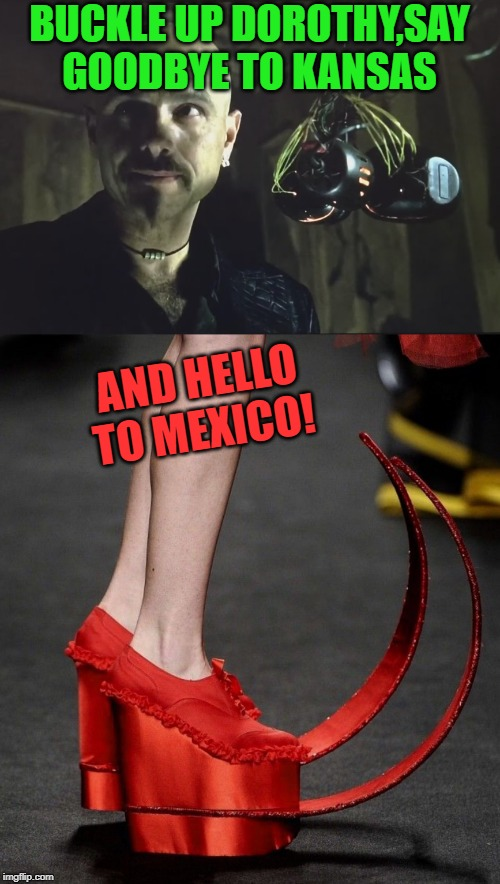 BUCKLE UP DOROTHY,SAY GOODBYE TO KANSAS AND HELLO TO MEXICO! | made w/ Imgflip meme maker