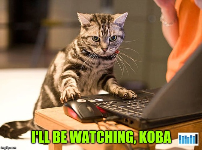 Working Cat | I'LL BE WATCHING, KOBA | image tagged in working cat | made w/ Imgflip meme maker