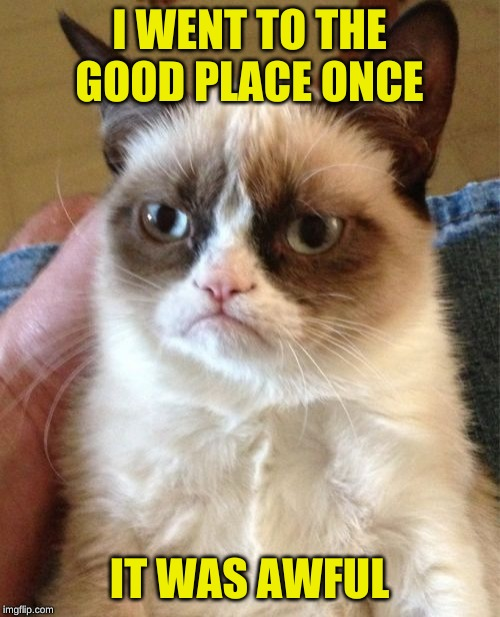 Grumpy Cat Meme | I WENT TO THE GOOD PLACE ONCE IT WAS AWFUL | image tagged in memes,grumpy cat | made w/ Imgflip meme maker