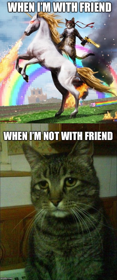 WHEN I'M WITH FRIEND WHEN I'M NOT WITH FRIEND | image tagged in memes,welcome to the internets,depressed cat | made w/ Imgflip meme maker