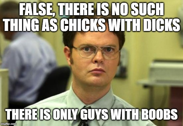 Dwight Schrute Meme |  FALSE, THERE IS NO SUCH THING AS CHICKS WITH DICKS; THERE IS ONLY GUYS WITH BOOBS | image tagged in memes,dwight schrute | made w/ Imgflip meme maker