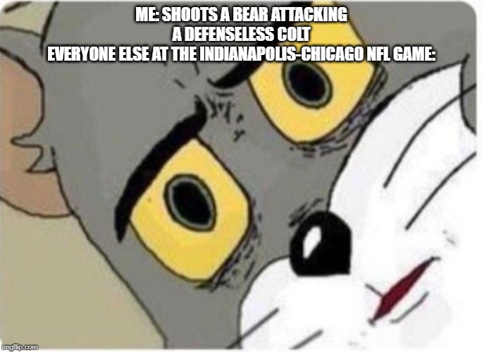 Tom and Jerry meme |  ME: SHOOTS A BEAR ATTACKING A DEFENSELESS COLT EVERYONE ELSE AT THE INDIANAPOLIS-CHICAGO NFL GAME: | image tagged in tom and jerry meme | made w/ Imgflip meme maker