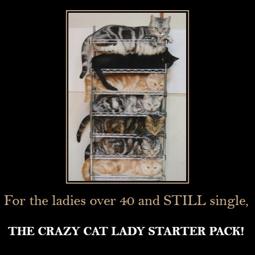 For the ladies over 40 and STILL single, | THE CRAZY CAT LADY STARTER PACK! | image tagged in funny,demotivationals | made w/ Imgflip demotivational maker