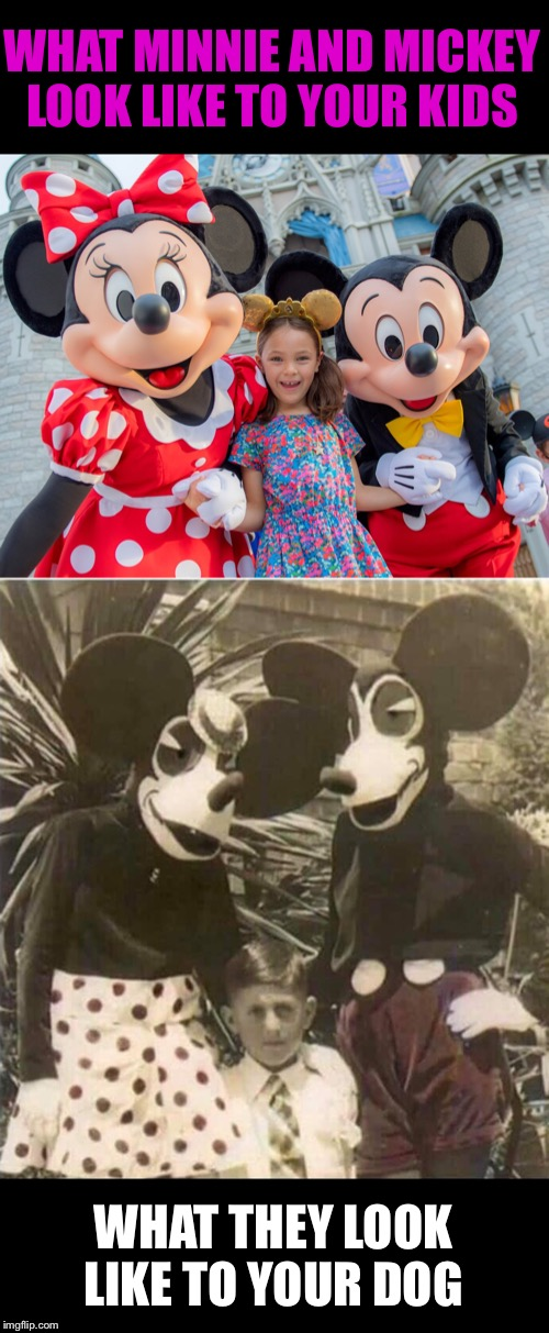 Please, keep your dog at home. | WHAT MINNIE AND MICKEY LOOK LIKE TO YOUR KIDS WHAT THEY LOOK LIKE TO YOUR DOG | image tagged in mickey mouse,disneyland,kids,scared dog,funny memes | made w/ Imgflip meme maker