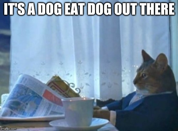 I Should Buy A Boat Cat Meme | IT'S A DOG EAT DOG OUT THERE | image tagged in memes,i should buy a boat cat | made w/ Imgflip meme maker