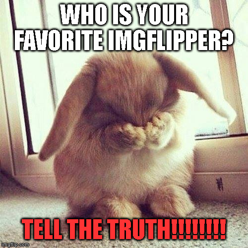 This is a hard question!!!! | WHO IS YOUR FAVORITE IMGFLIPPER? TELL THE TRUTH!!!!!!!! | image tagged in shy rabbit | made w/ Imgflip meme maker