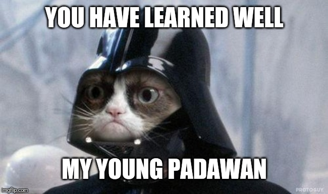 Grumpy Cat Star Wars Meme | YOU HAVE LEARNED WELL MY YOUNG PADAWAN | image tagged in memes,grumpy cat star wars,grumpy cat | made w/ Imgflip meme maker