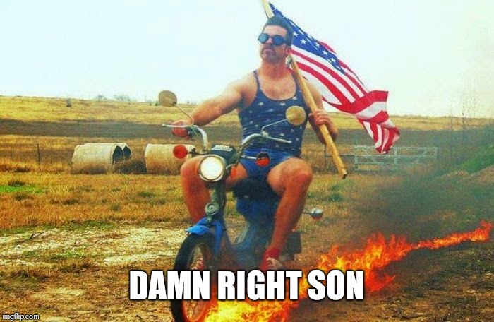 'merica scooter | DAMN RIGHT SON | image tagged in 'merica scooter | made w/ Imgflip meme maker