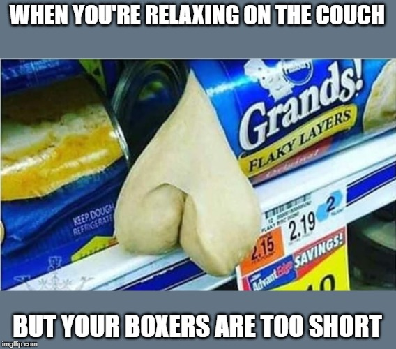 Flasher | WHEN YOU'RE RELAXING ON THE COUCH BUT YOUR BOXERS ARE TOO SHORT | image tagged in funny short boxers,funny flasher | made w/ Imgflip meme maker