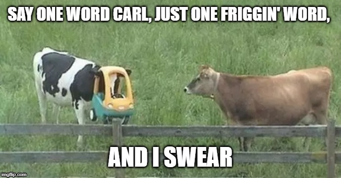 cow toy | image tagged in animals | made w/ Imgflip meme maker