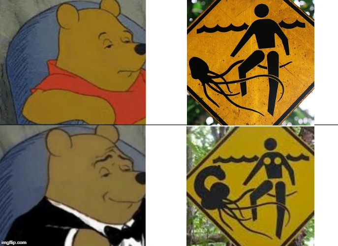 Tuxedo Winnie The Pooh | image tagged in memes,tuxedo winnie the pooh,funny signs,weird stuff,signs | made w/ Imgflip meme maker
