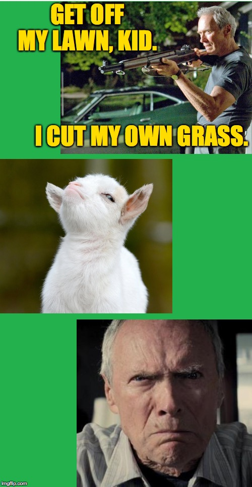 Clash of titans | GET OFF MY LAWN, KID. I CUT MY OWN GRASS. | image tagged in green screen,memes,get off my lawn,mad clint eastwood,proud baby goat | made w/ Imgflip meme maker