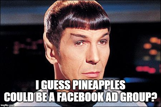 Condescending Spock |  I GUESS PINEAPPLES COULD BE A FACEBOOK AD GROUP? | image tagged in condescending spock | made w/ Imgflip meme maker