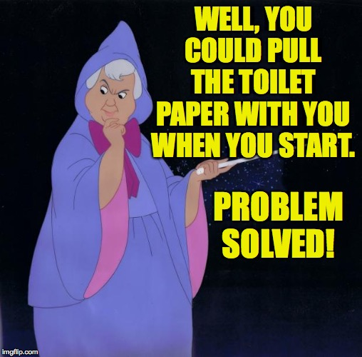 Fairy Godmother | WELL, YOU COULD PULL THE TOILET PAPER WITH YOU WHEN YOU START. PROBLEM SOLVED! | image tagged in fairy godmother | made w/ Imgflip meme maker