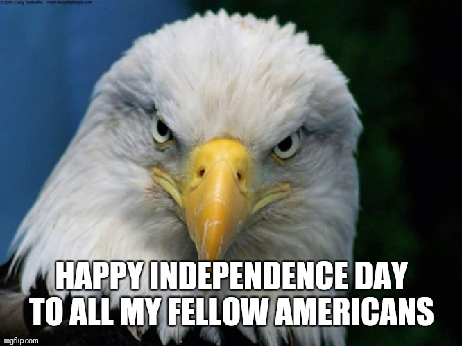 Happy July 4th | HAPPY INDEPENDENCE DAY TO ALL MY FELLOW AMERICANS | image tagged in american bald eagle,independence day,4th of july,'murica,freedom | made w/ Imgflip meme maker