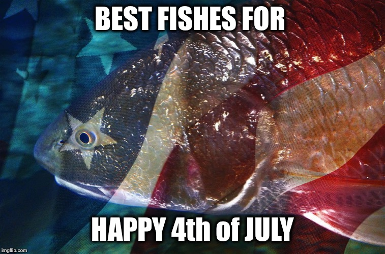 Be safe! | BEST FISHES FOR HAPPY 4th of JULY | image tagged in 4th of july,independence day | made w/ Imgflip meme maker