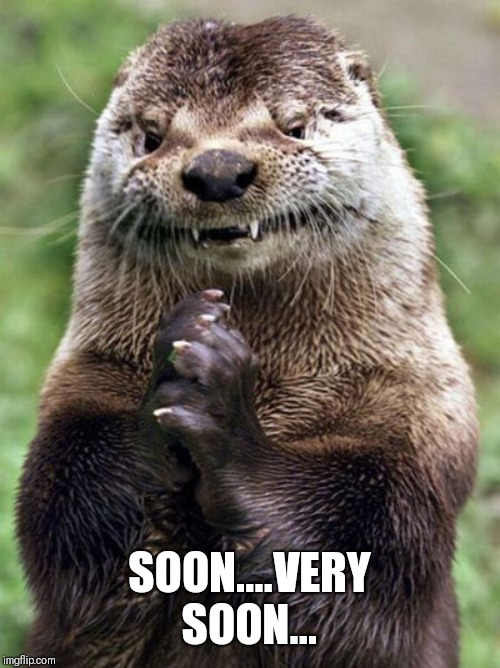 Evil Otter Meme | SOON....VERY SOON... | image tagged in memes,evil otter | made w/ Imgflip meme maker