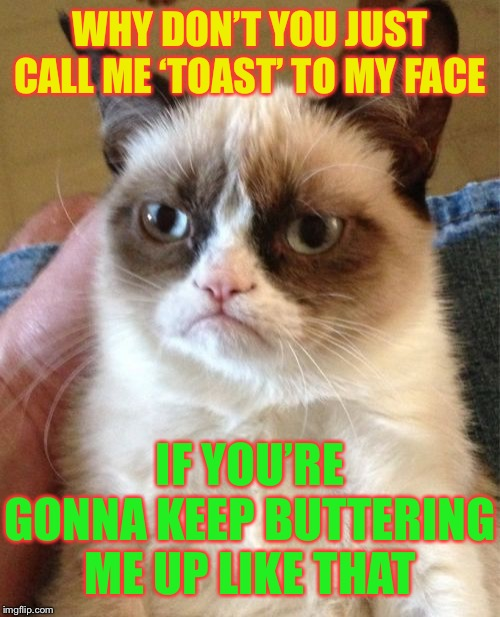 Grumpy Cat Meme | WHY DON'T YOU JUST CALL ME 'TOAST' TO MY FACE IF YOU'RE GONNA KEEP BUTTERING ME UP LIKE THAT | image tagged in memes,grumpy cat | made w/ Imgflip meme maker