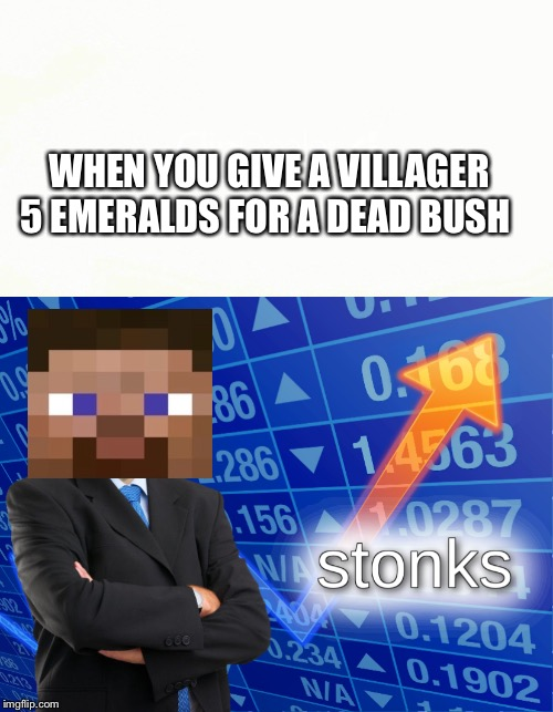 WHEN YOU GIVE A VILLAGER 5 EMERALDS FOR A DEAD BUSH | image tagged in stonks | made w/ Imgflip meme maker