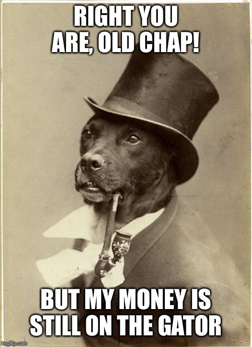 Old Money Dog | RIGHT YOU ARE, OLD CHAP! BUT MY MONEY IS STILL ON THE GATOR | image tagged in old money dog | made w/ Imgflip meme maker