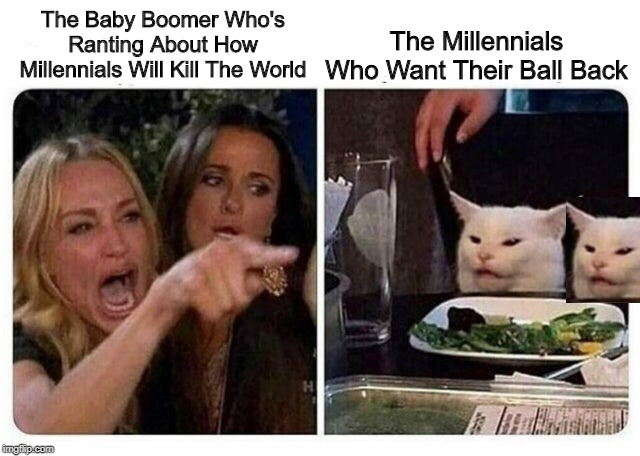 Just Give It Back, Old Timer! | The Baby Boomer Who's Ranting About How Millennials Will Kill The World The Millennials Who Want Their Ball Back | image tagged in cat at dinner,memes | made w/ Imgflip meme maker