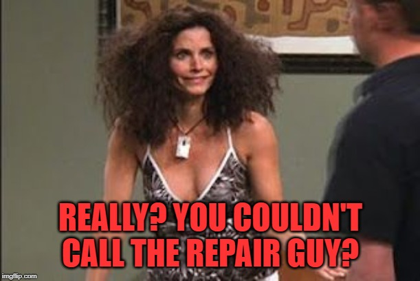 Friends Bad Hair | REALLY? YOU COULDN'T CALL THE REPAIR GUY? | image tagged in friends bad hair | made w/ Imgflip meme maker