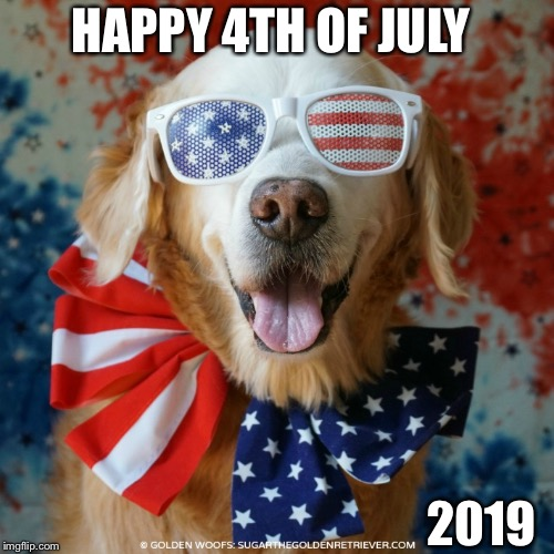 Happy 4th of July | HAPPY 4TH OF JULY 2019 | image tagged in 4th of july dog,4th of july,dogs,america,holiday | made w/ Imgflip meme maker