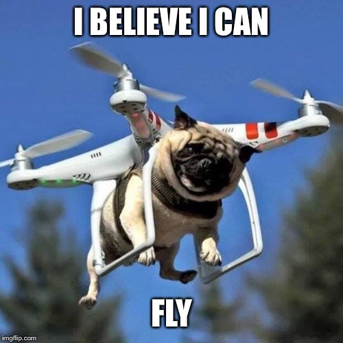 I BELIEVE I CAN FLY | image tagged in flying pug | made w/ Imgflip meme maker
