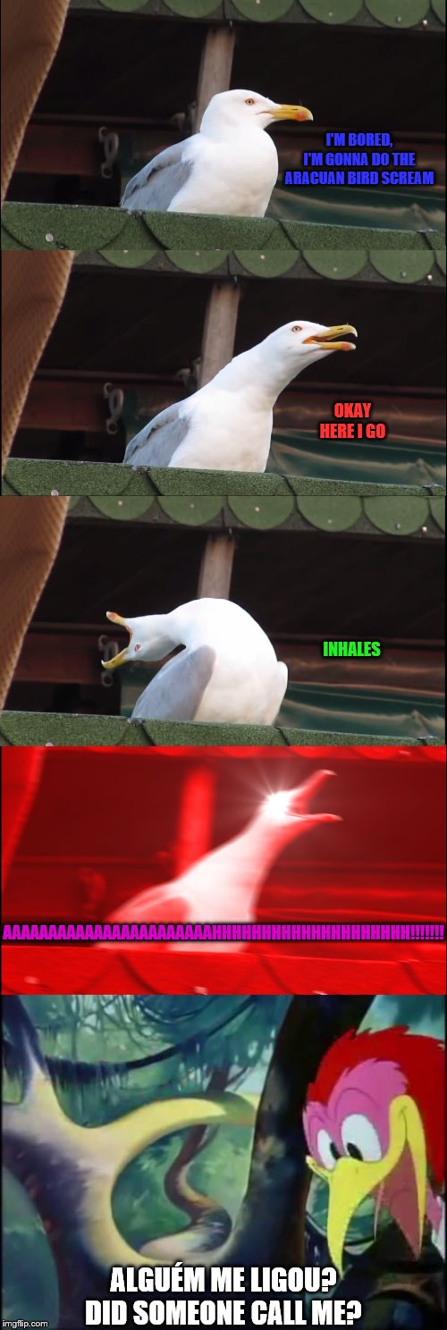 gull to Aracuan Bird |  I'M BORED, I'M GONNA DO THE ARACUAN BIRD SCREAM; OKAY HERE I GO; INHALES; AAAAAAAAAAAAAAAAAAAAAAAHHHHHHHHHHHHHHHHHHHH!!!!!!! ALGUÉM ME LIGOU? DID SOMEONE CALL ME? | image tagged in memes,inhaling seagull,aracuan bird,the three caballeros,disney | made w/ Imgflip meme maker