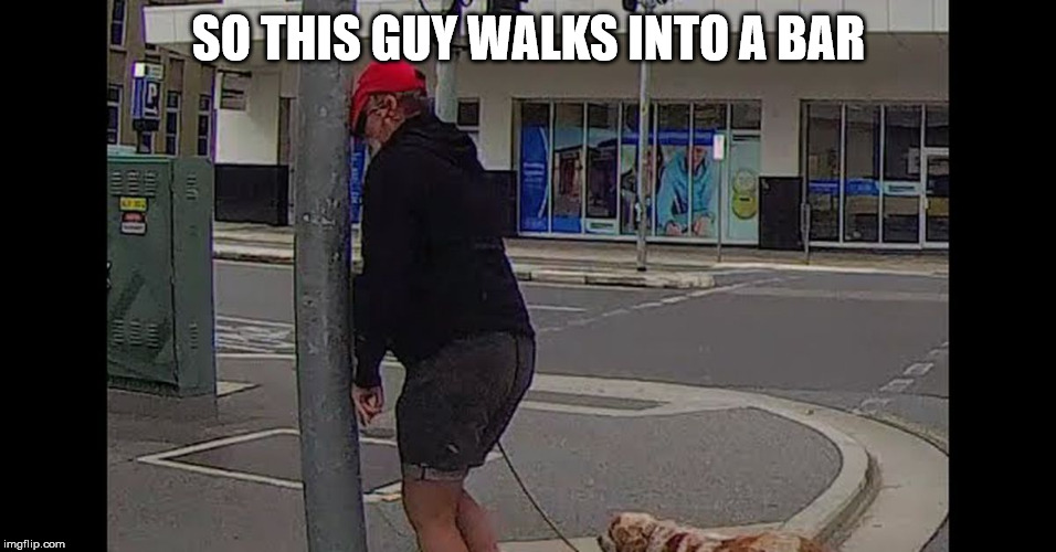 Well, it's really a pole | SO THIS GUY WALKS INTO A BAR | image tagged in punny,haha | made w/ Imgflip meme maker