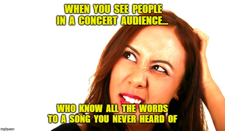 SUPER GROUPIES! | WHEN  YOU  SEE  PEOPLE  IN  A  CONCERT  AUDIENCE... WHO  KNOW  ALL  THE  WORDS TO  A  SONG  YOU  NEVER  HEARD  OF | image tagged in feminazi,rock concert,groupies,memes | made w/ Imgflip meme maker