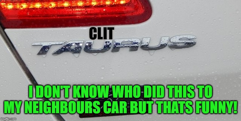funny vandalism | CLIT I DON'T KNOW WHO DID THIS TO MY NEIGHBOURS CAR BUT THATS FUNNY! | image tagged in funny,vandalism,ford | made w/ Imgflip meme maker