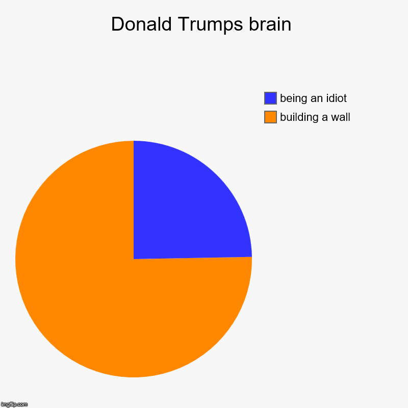 Donald Trumps brain | building a wall, being an idiot | image tagged in charts,pie charts | made w/ Imgflip chart maker