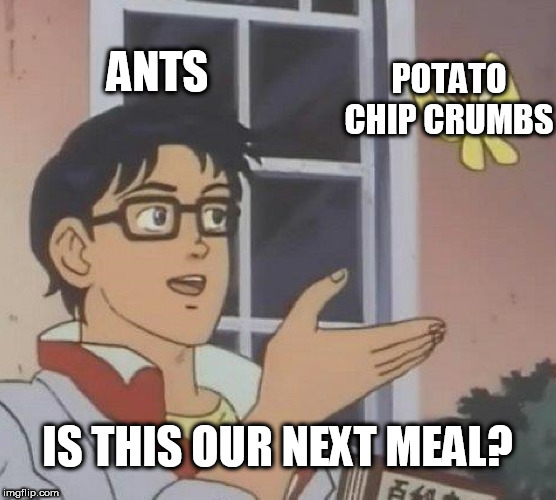 Still time in my theme week. Potato Chips Week. June 30 to July 7 | ANTS POTATO CHIP CRUMBS IS THIS OUR NEXT MEAL? | image tagged in memes,is this a pigeon,potato chips,theme week | made w/ Imgflip meme maker