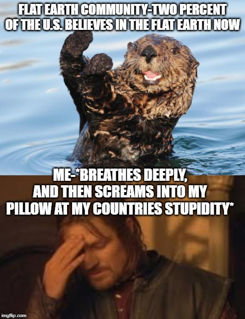 i wish this was a joke | FLAT EARTH COMMUNITY-TWO PERCENT OF THE U.S. BELIEVES IN THE FLAT EARTH NOW ME-*BREATHES DEEPLY, AND THEN SCREAMS INTO MY PILLOW AT MY COUNT | image tagged in when will rithika understand sigh,otter celebration,sigh,flat earthers,why me | made w/ Imgflip meme maker