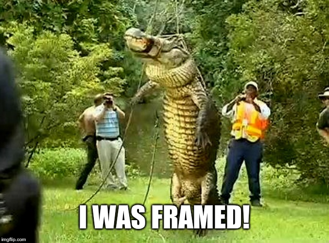 I WAS FRAMED! | made w/ Imgflip meme maker