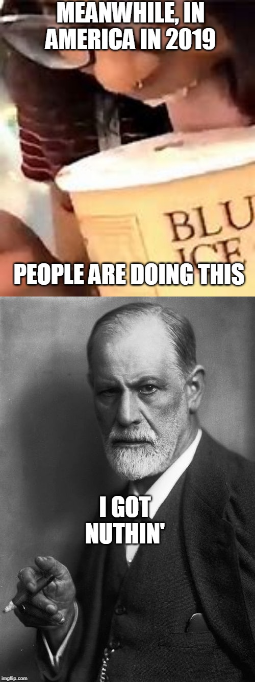 MEANWHILE, IN AMERICA IN 2019 PEOPLE ARE DOING THIS I GOT NUTHIN' | image tagged in memes,sigmund freud | made w/ Imgflip meme maker