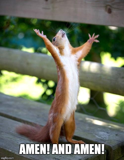 Praise Squirrel | AMEN! AND AMEN! | image tagged in praise squirrel | made w/ Imgflip meme maker