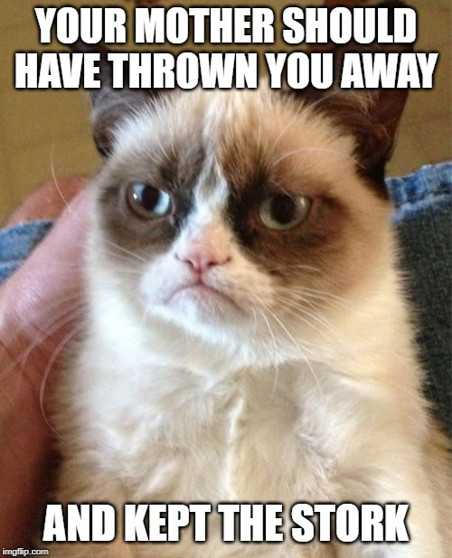 Grumpy Cat | YOUR MOTHER SHOULD HAVE THROWN YOU AWAY AND KEPT THE STORK | image tagged in memes,grumpy cat,mae west | made w/ Imgflip meme maker