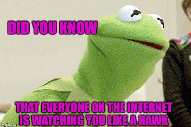 Did you know kermit |  DID YOU KNOW; THAT EVERYONE ON THE INTERNET IS WATCHING YOU LIKE A HAWK | image tagged in did you know kermit | made w/ Imgflip meme maker