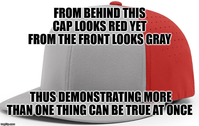 More Than One | FROM BEHIND THIS CAP LOOKS RED YET FROM THE FRONT LOOKS GRAY THUS DEMONSTRATING MORE THAN ONE THING CAN BE TRUE AT ONCE | image tagged in hat,baseball cap,red,grey,true,simultaneous | made w/ Imgflip meme maker