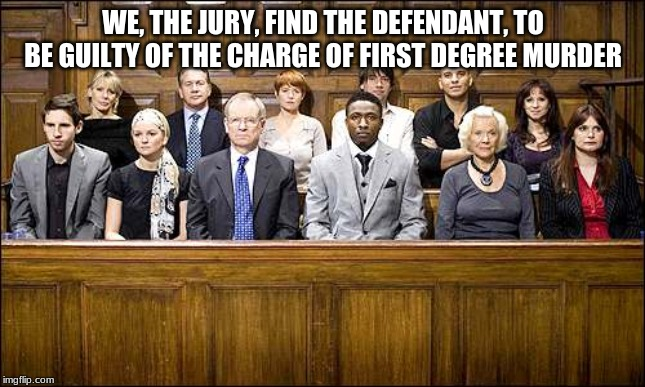 Jury | WE, THE JURY, FIND THE DEFENDANT, TO BE GUILTY OF THE CHARGE OF FIRST DEGREE MURDER | image tagged in jury | made w/ Imgflip meme maker