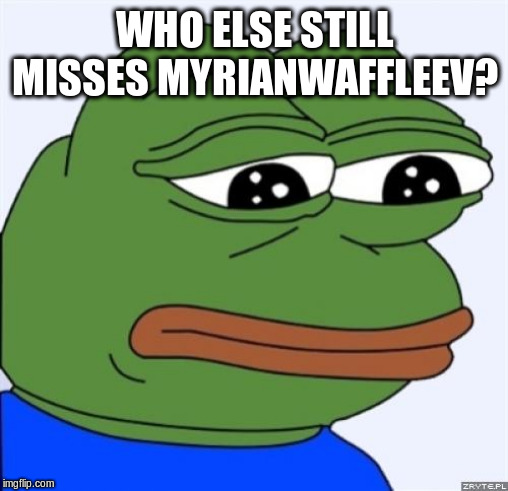 I hope she eventually returns. | WHO ELSE STILL MISSES MYRIANWAFFLEEV? | image tagged in sad frog,myrianwaffleev,miss,this is sad | made w/ Imgflip meme maker