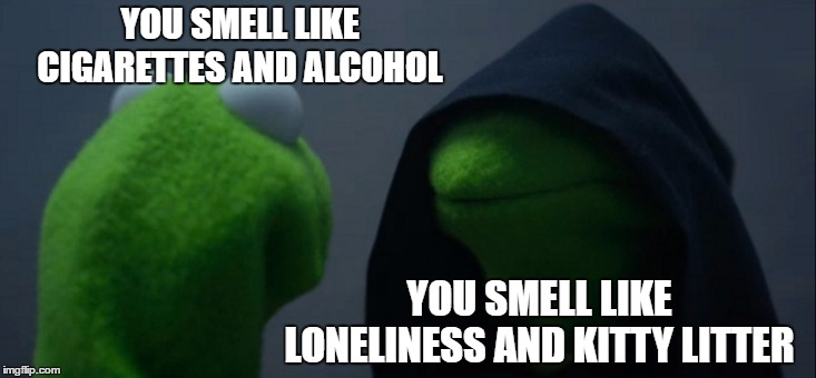 Evil Kermit | YOU SMELL LIKE CIGARETTES AND ALCOHOL YOU SMELL LIKE LONELINESS AND KITTY LITTER | image tagged in memes,evil kermit,random,kitty,alcohol,cigarettes | made w/ Imgflip meme maker