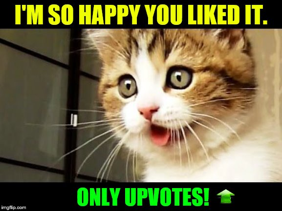 I'M SO HAPPY YOU LIKED IT. ONLY UPVOTES! | made w/ Imgflip meme maker
