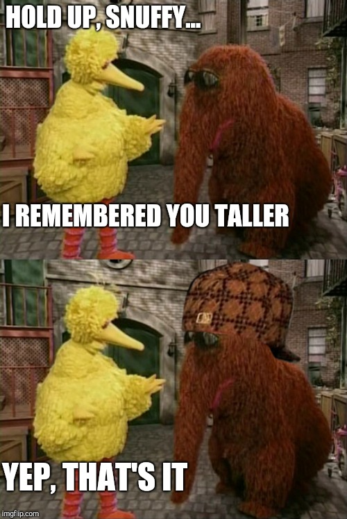 HOLD UP, SNUFFY... I REMEMBERED YOU TALLER YEP, THAT'S IT | image tagged in memes,big bird and snuffy,mandela effect,big bird,sesame street,snuffy | made w/ Imgflip meme maker