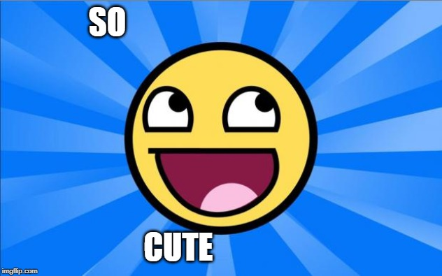Happy Face | SO CUTE | image tagged in happy face | made w/ Imgflip meme maker