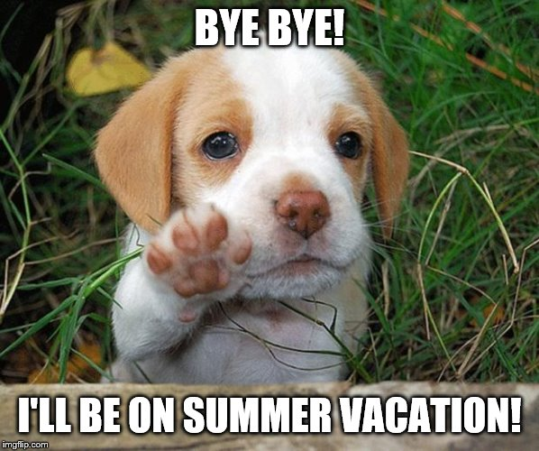 Thats right! I'll be on vacation for a week, so you won't see uploads. | BYE BYE! I'LL BE ON SUMMER VACATION! | image tagged in dog puppy bye,vacation,summer vacation,goodbye | made w/ Imgflip meme maker