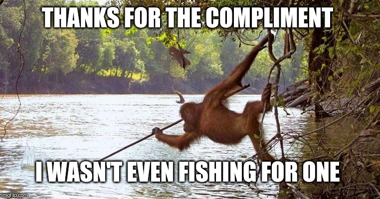 THANKS FOR THE COMPLIMENT I WASN'T EVEN FISHING FOR ONE | made w/ Imgflip meme maker