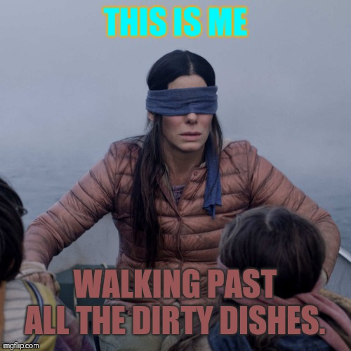 Bird Box Meme | THIS IS ME WALKING PAST ALL THE DIRTY DISHES. | image tagged in memes,bird box | made w/ Imgflip meme maker